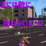 ✿荒野行動✿東京マップでまったりドン勝?www