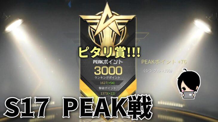 【荒野行動】ピーク戦3000ポイント目指して!!!嵐マップでピタリ賞!!!【生放送】~#黒騎士Y